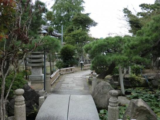 本照寺の庭園